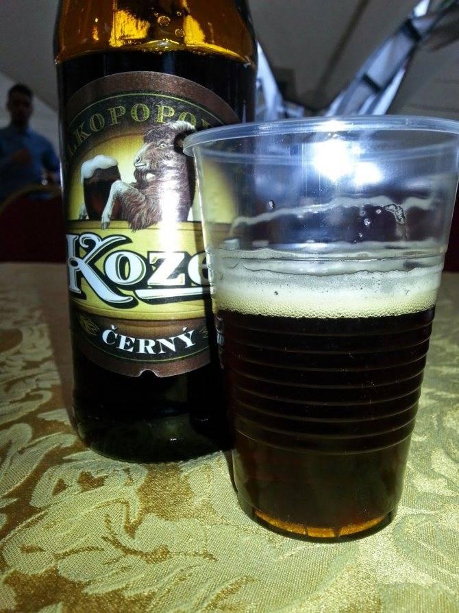 Какое пиво лучше для здоровья светлое или темное: нюансы