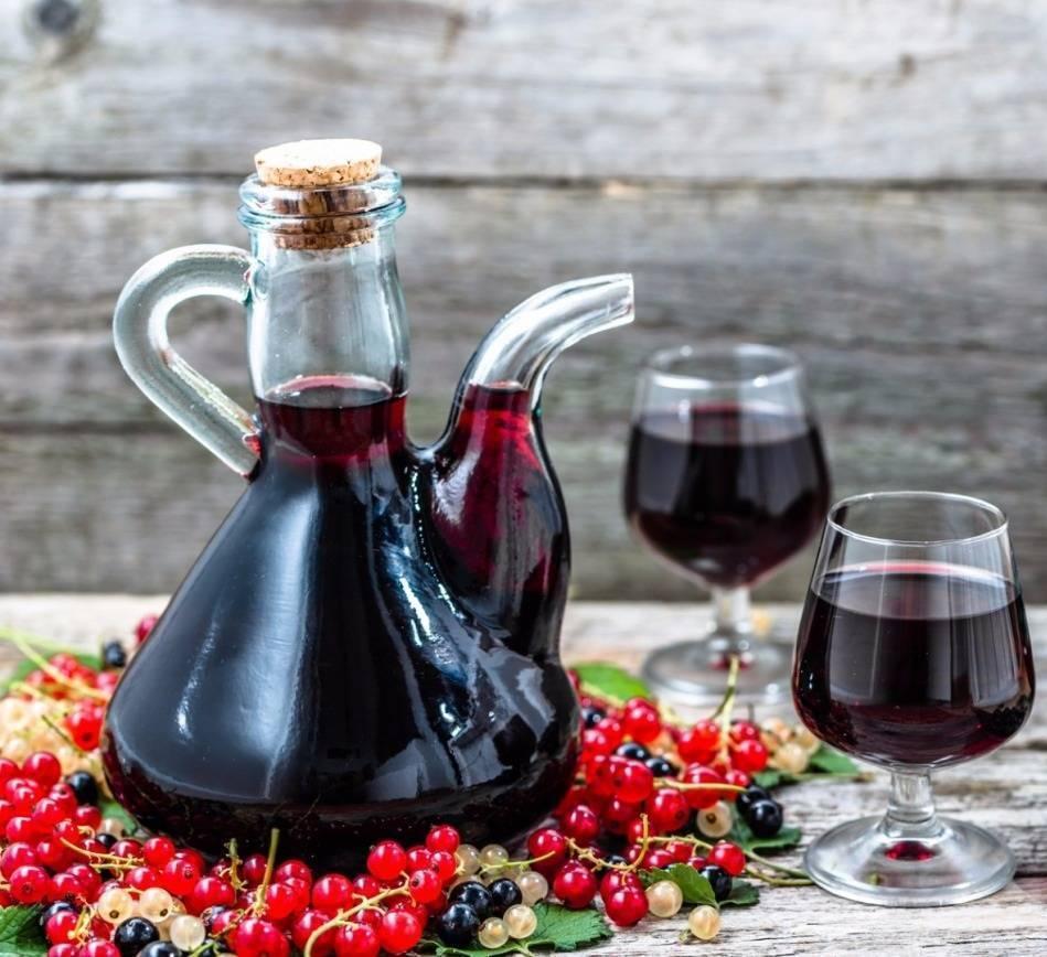 Вино из красной смородины - простой рецепт в домашних условиях