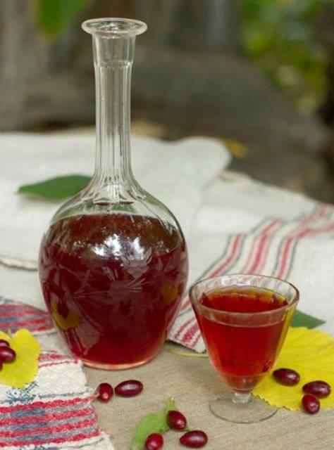 Настойка из кизила на водке - свойства напитка и рецепты