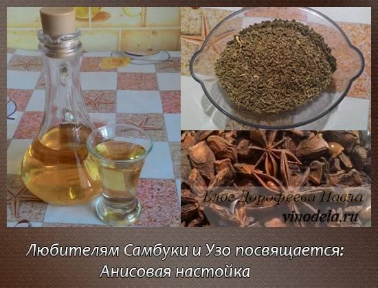 Анисовка – анисовая настойка на водке, спирте и самогоне