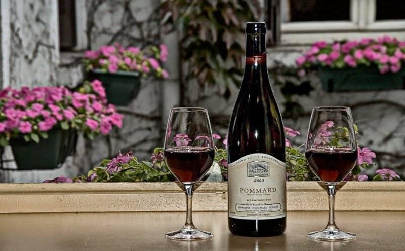 Обзор французских вин бургундии