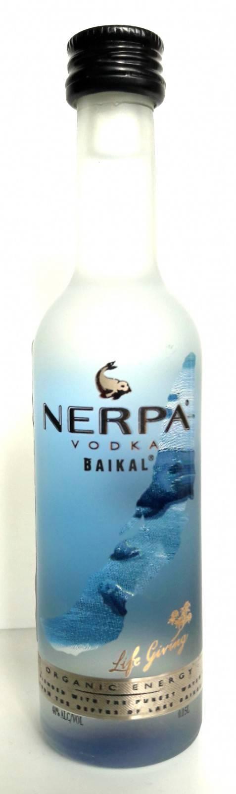 Байкальская нерпа ? фото, описание, ареал, питание, враги ✔