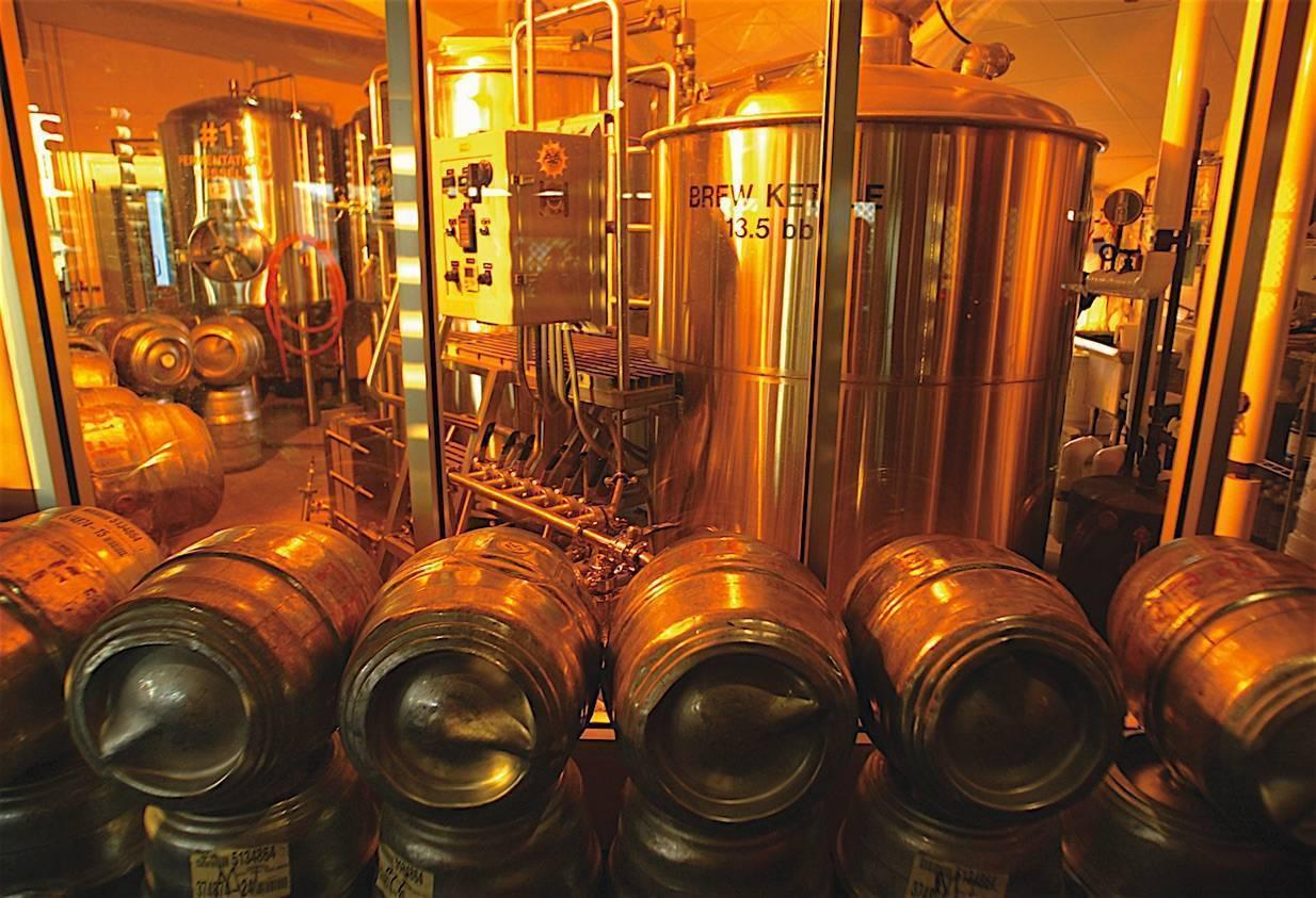 Из чего делают порошковое и натуральное пиво?