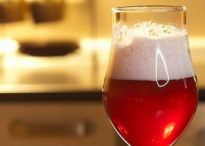 ? красное пиво: марки, виды, рецепт приготовления