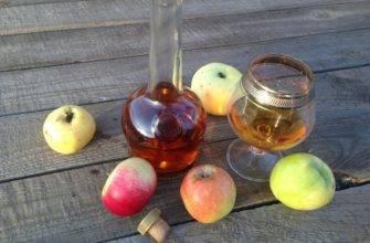 Как подкрасить самогон чаем. чем лучше закрасить самогон: рецепты в домашних условиях. клюква, вишня или красная смородина