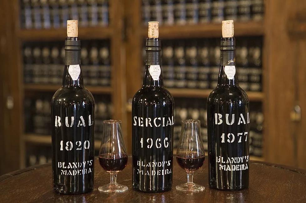 Вино мадера (мадейра): история, отзывы, где купить и цена
