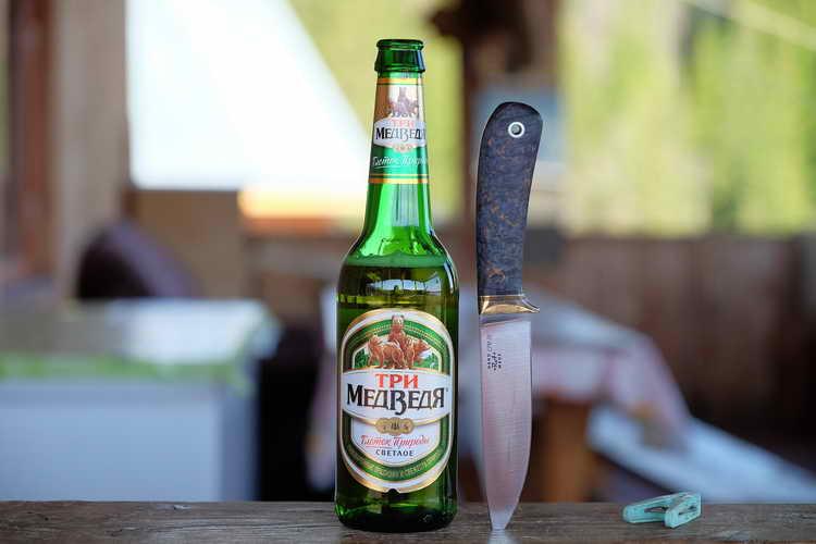 Какое пиво лучше: рейтинг зарубежных и российских марок