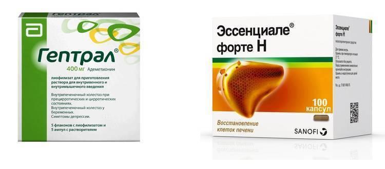 Фосфоглив или эссенциале – что лучше? сравнение препаратов - освобождение