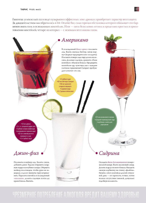 Коктейли с джином - 135 фото самых вкусных рецептов и особенности их комбинаций