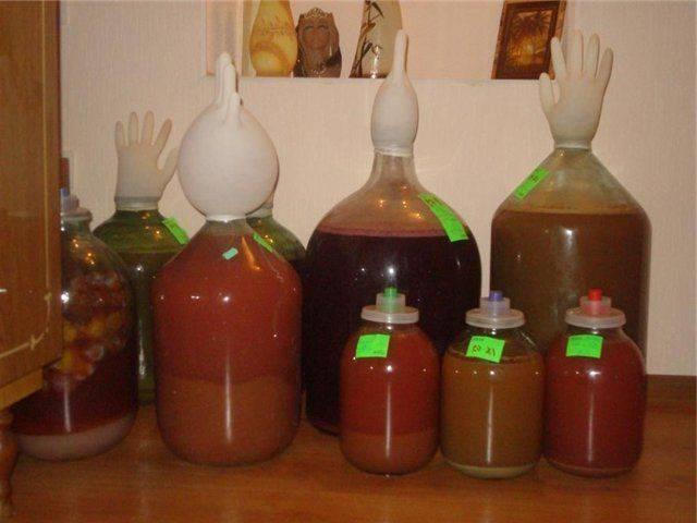 Брага из сахара и дрожжей: тонкости приготовления и пропорции