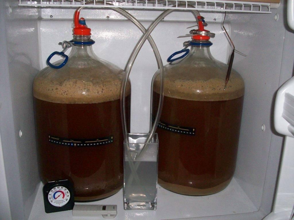 Сырье для производства пива: описание процесса