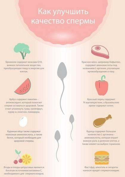 Курение и сперматозоиды: влияние, изминения, советы врачей