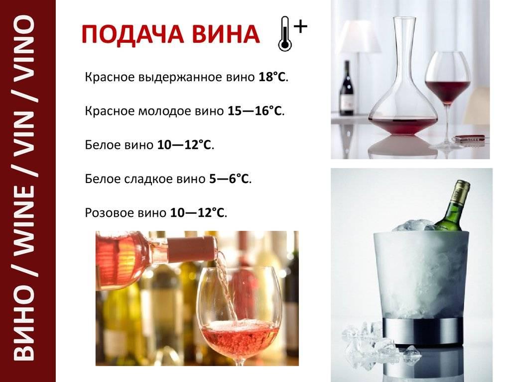 Домашнее вино: польза и вред для организма, нормы употребления