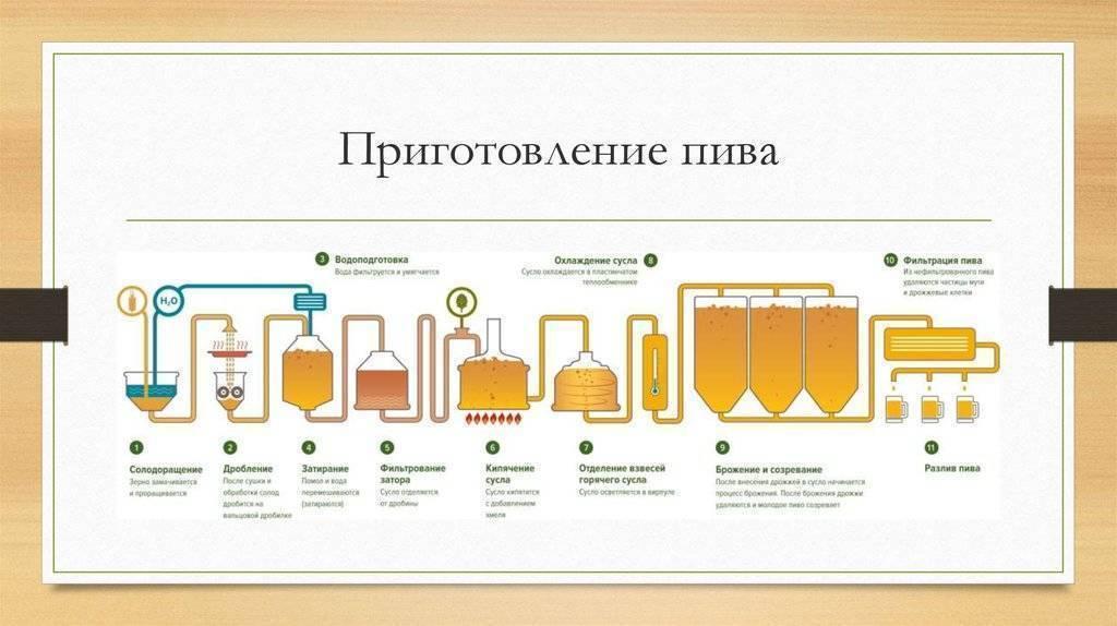Польза пива для организма мужчины, его вред для здоровья, рецепт напитка со сметаной
