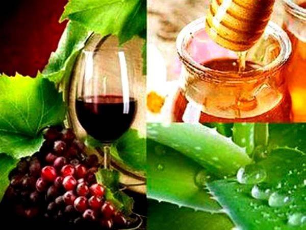 Алоэ с медом: лечебные свойства и противопоказания, рецепты