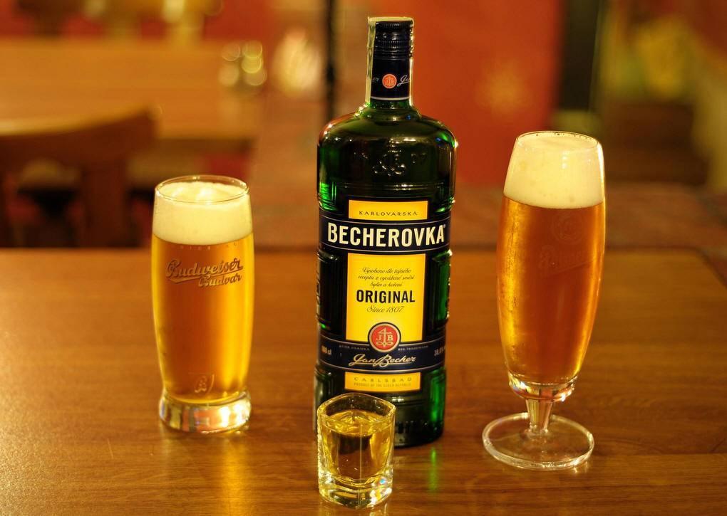 Как правильно пить пиво — правила выбора и употребления