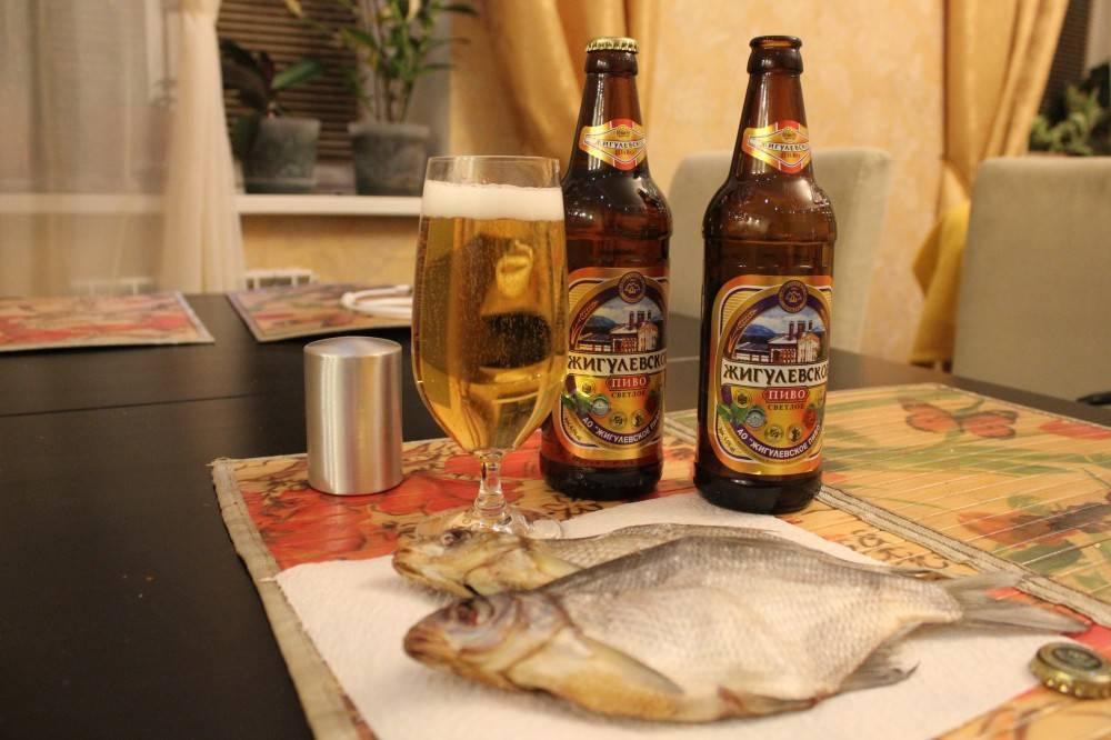 Жигулевское пиво — отзывы, вкусовые качества, рецепты, градусы и отзывы экспертов (90 фото и видео)