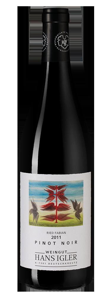 Описание винограда сорта пино нуар (pinot noir)