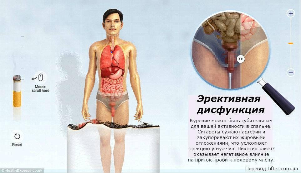 Какая взаимосвязь между курением и щитовидной железой
