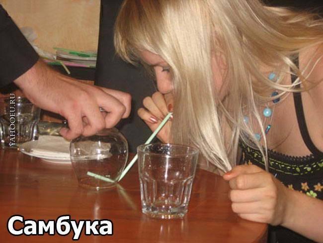 Как правильно пить самбуку и чем закусывать советы новичкам