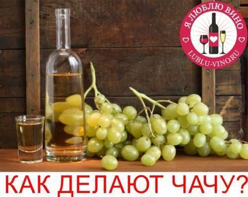 Чача из винограда в домашних условиях: простые грузинские рецепты c видео