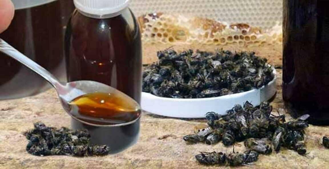Отвар из подмора пчел при простатите простатит отдает яичко
