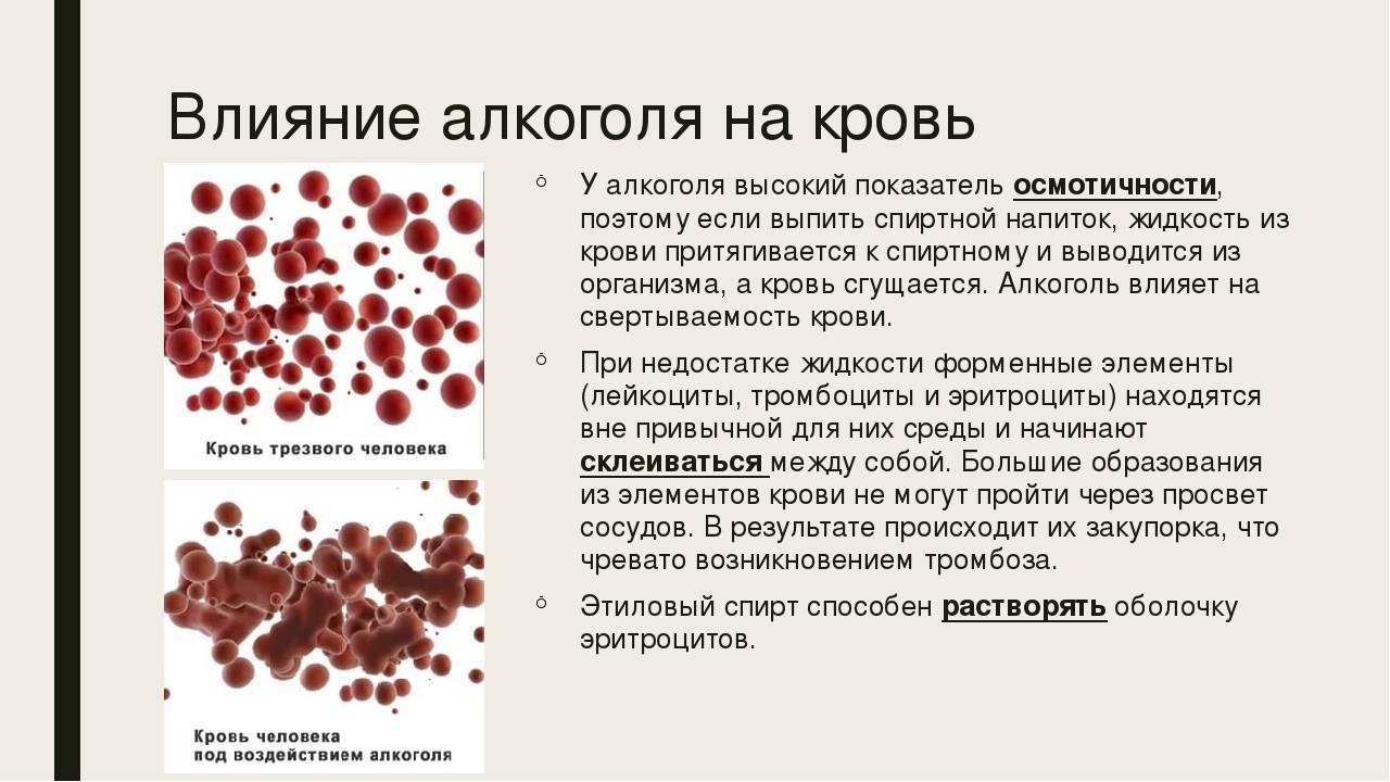 Красное вино повышает ли гемоглобин: какое выбирать