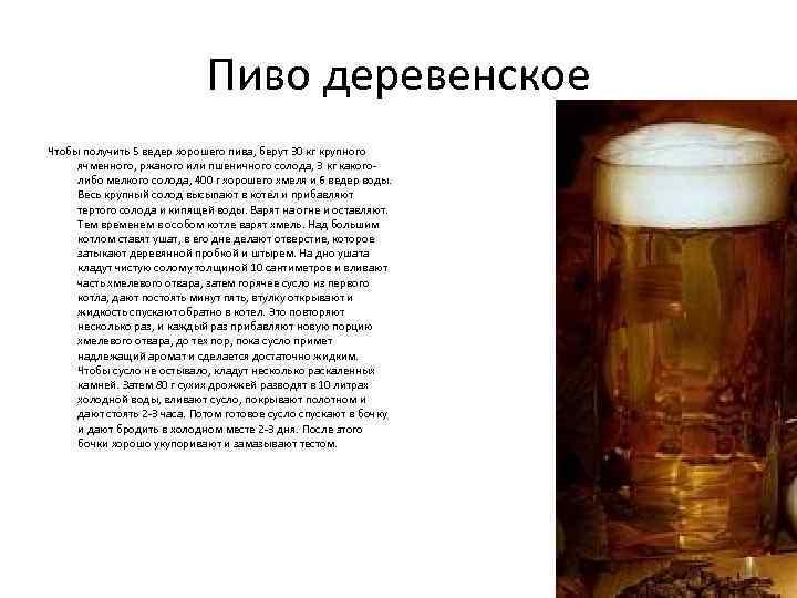 Домашнее пиво из ячменя: ингредиенты и технология приготовления