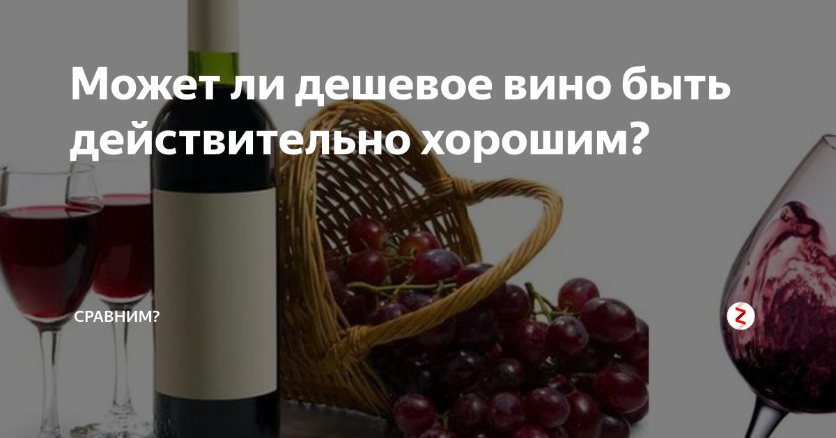 Может ли хорошее вино быть дешёвым? | golbis