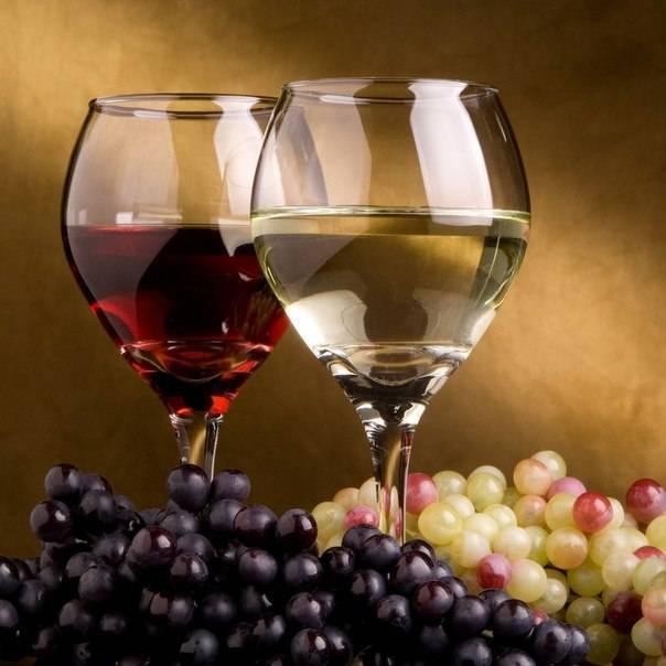 Технология приготовления сухого вина из винограда