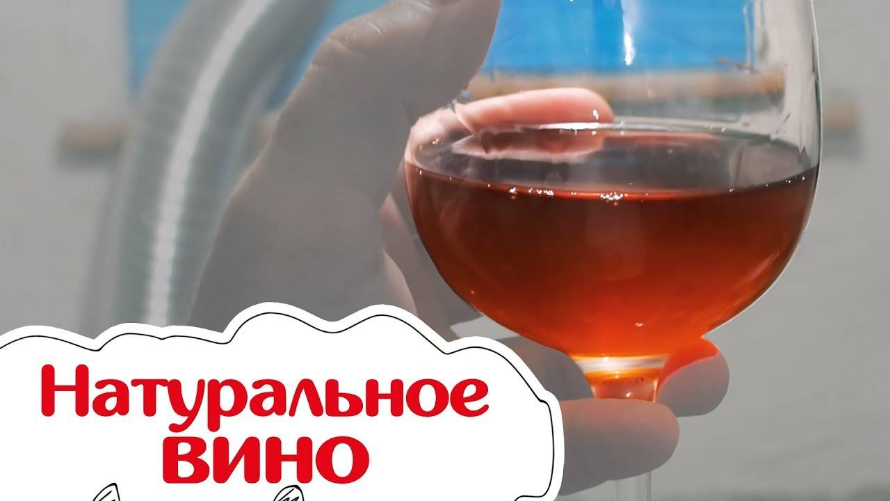 Как оценить качество вина?