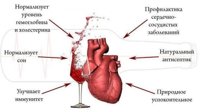 Вино расширяет сосуды или сужает? - здоровье