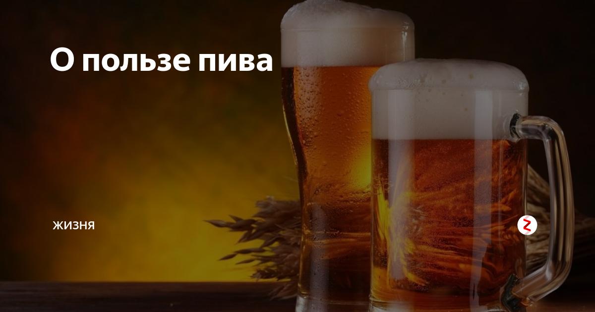 Живое пиво: что это такое, вред и польза