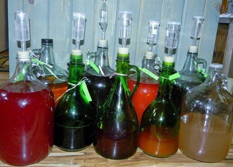 Рецепт яблочного вина по технологии виноделов