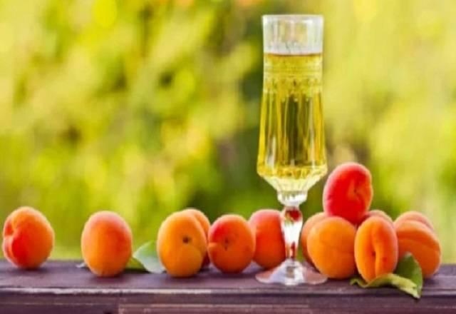 Как сделать вино из абрикосов в домашних условиях: простой рецепт как сделать вино из абрикосов в домашних условиях: простой рецепт