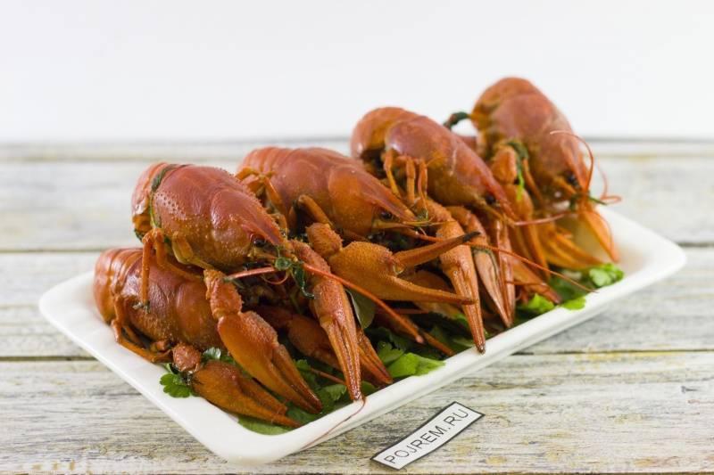 Рецепт раков вареных с укропом: легко приготовить вкусное блюдо