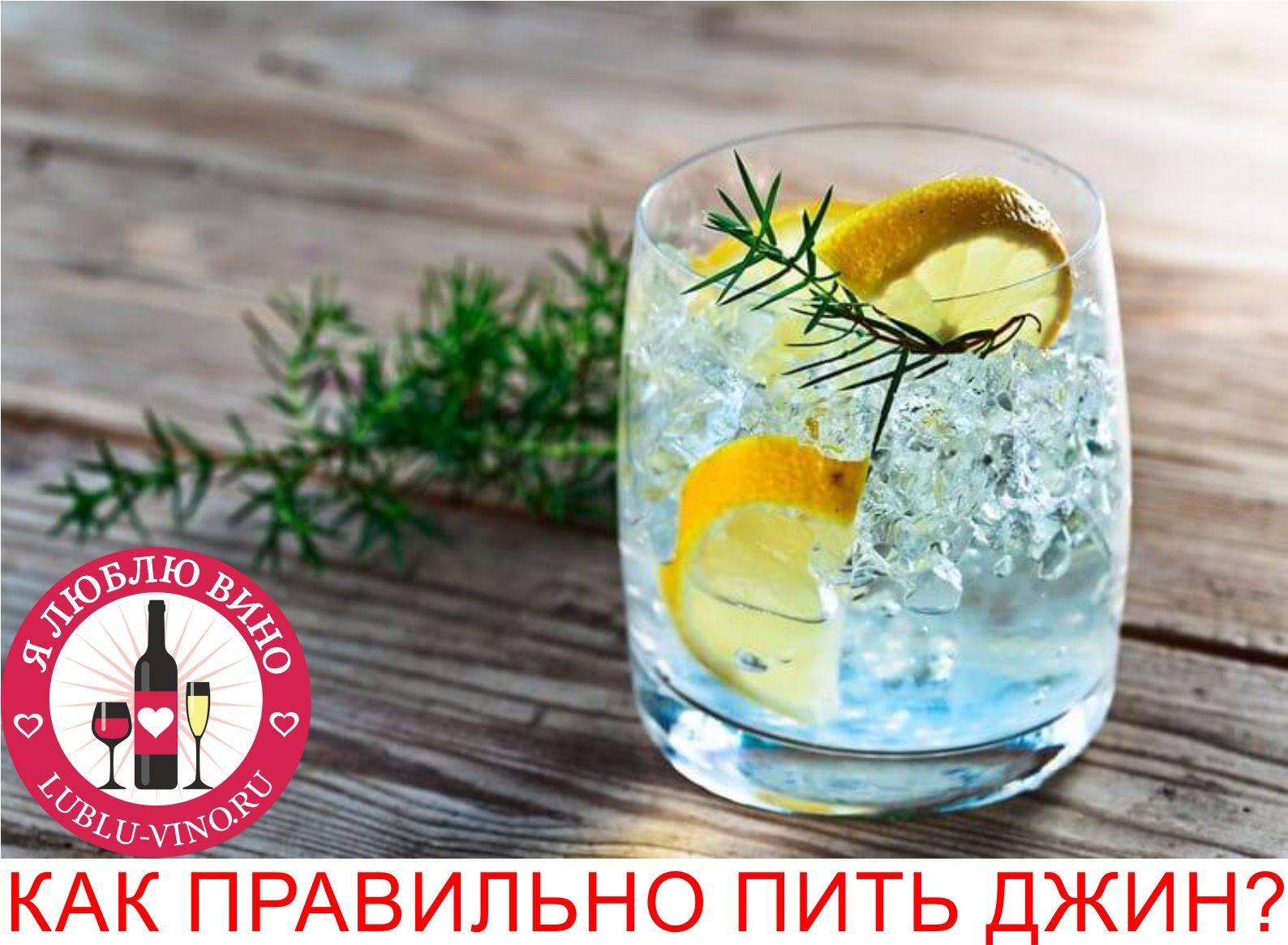 6 важнейших советов  о том, как правильно пить джин