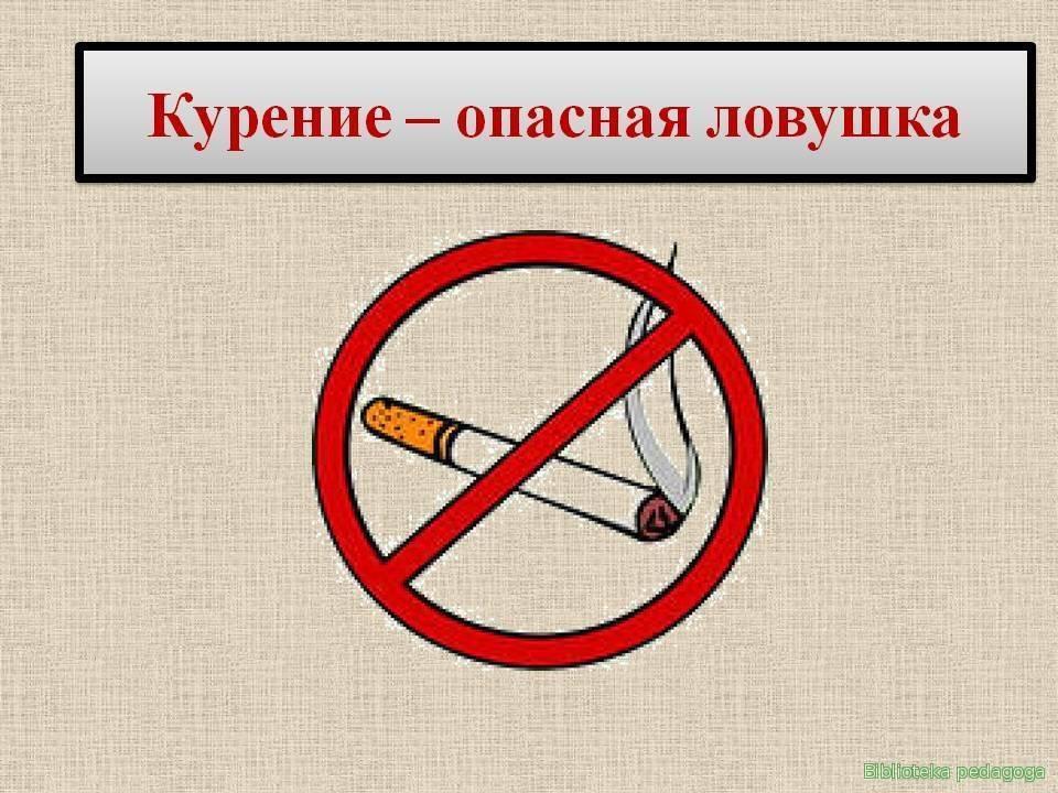 Картинки против курения с надписями. картинки о вреде курения как способ мотивации - доктор от аллергии