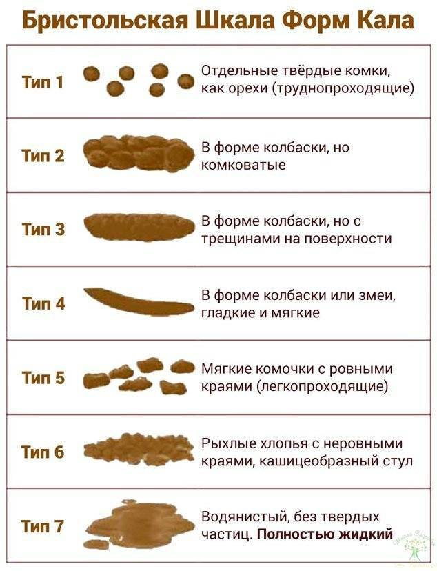 Цвет кала при гепатите с | советы доктора