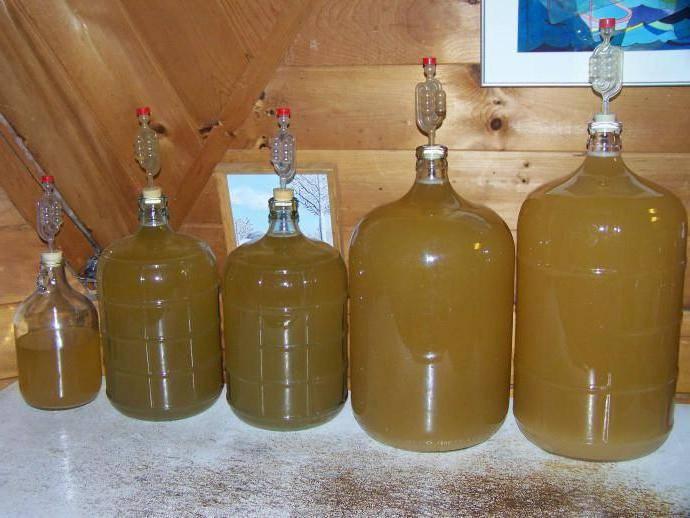 Рецепты вина из груш в домашних условиях. проверенные и одобренные технологии