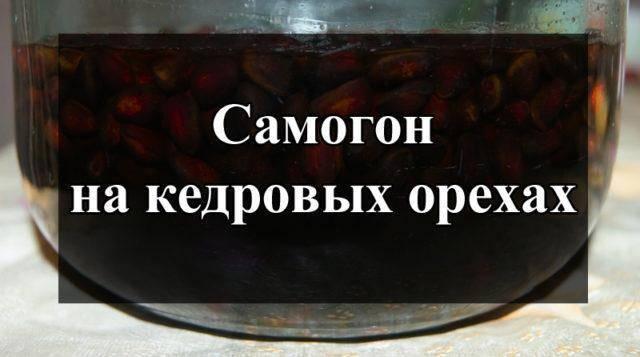 Самогон на кедровых орешках: настойка на семенах кедра, рецепты в домашних условиях