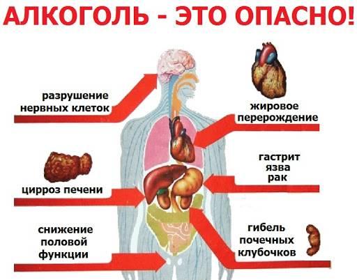 Жданов лекция о вреде алкоголя