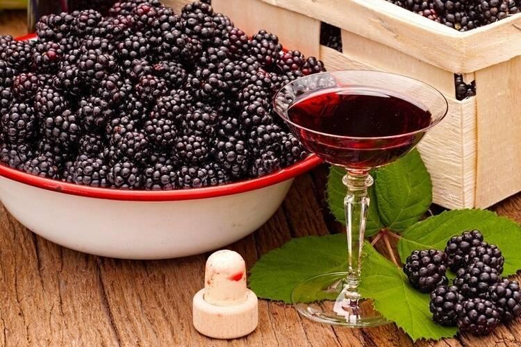 Наливка из ежевики – 6 рецептов на водке, спирту и самогоне