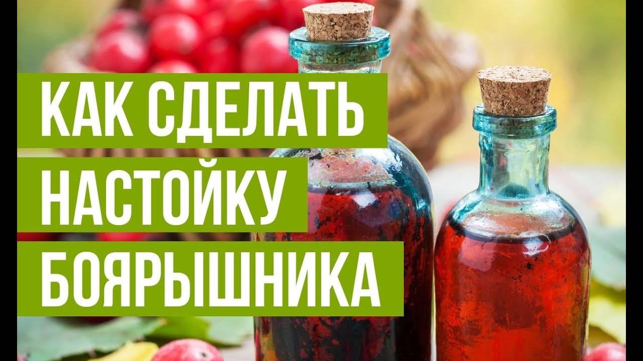 Настойка боярышника: рецепт приготовления, польза и вред