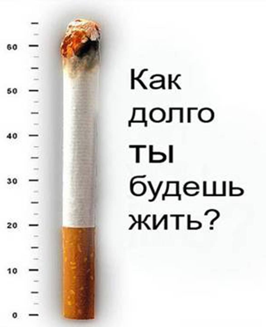 Как курить сигареты: 13 шагов (с иллюстрациями)