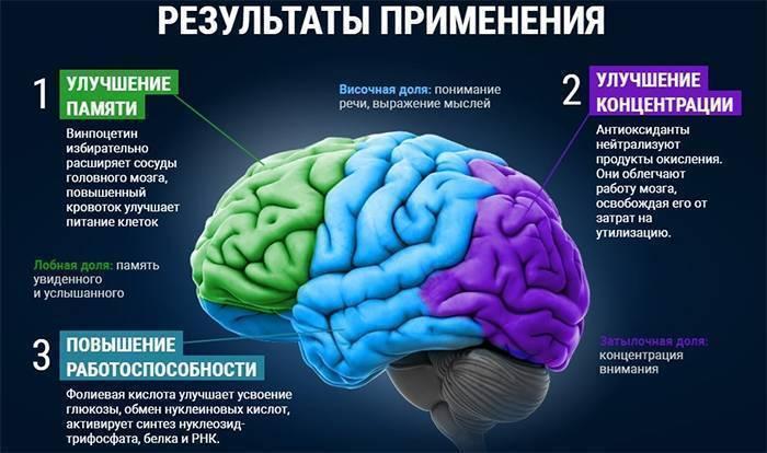 Прокачай свой мозг: какие препараты помогут улучшить мышление и память