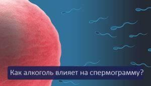 Что влияет на спермограмму: негативное воздействие пива, кофе и курения, расшифровка спермограммы   mfarma.ru