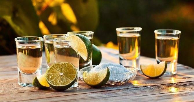 Как пить текилу и чем закусывать? как правильно пить текилу? как мексиканцы пьют текилу?