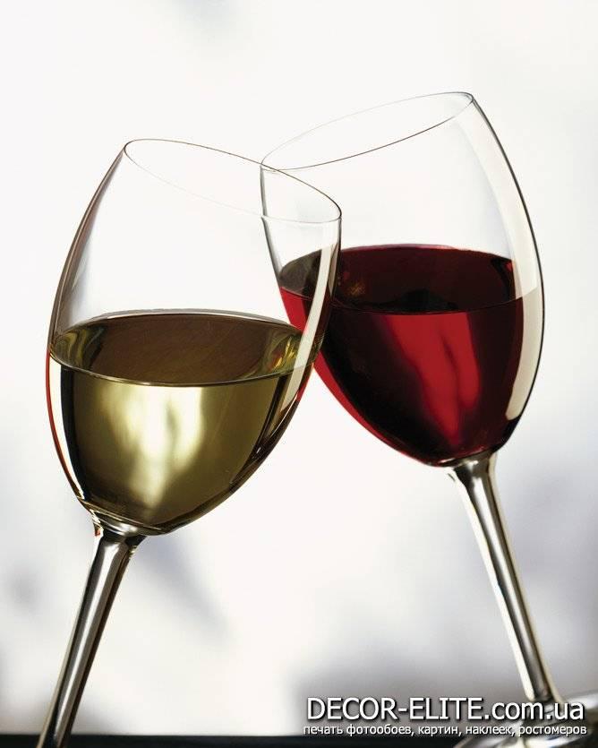 Диоксид серы в вине: влияние на организм, зачем добавляют диоксид серы в вине: влияние на организм, зачем добавляют