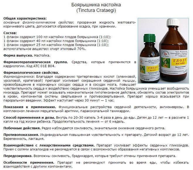 Зверобой – полезные свойства, применение, рецепты и лечение зверобоем